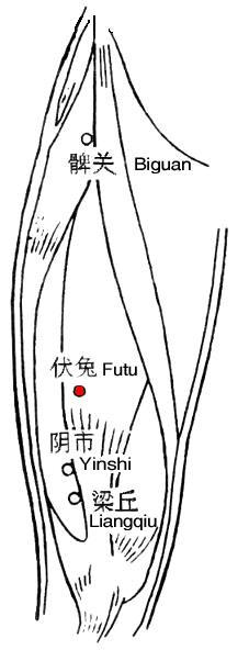 Futuxue