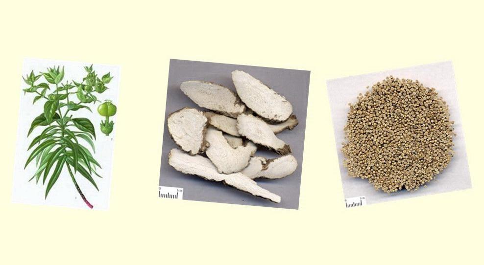 Herbs treatment