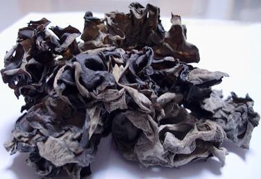 Black Fungus Tcm Herbs Tcm Wiki