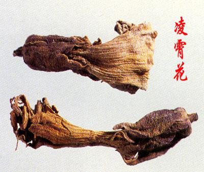 Ling Xiao Hua
