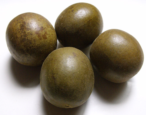 Fructus Momordicae - TCM Herbs - TCM Wiki