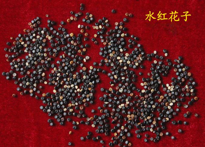 Shui Hong Hua Zi